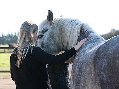 professional-development-with-horses.jpg
