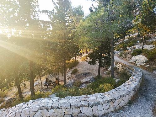 הרי ירושלים: הסטף-יד קנדי-עין כרם