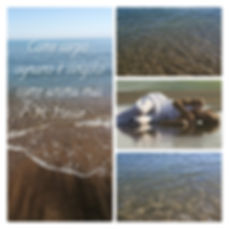 New Phototastic Collage.jpg