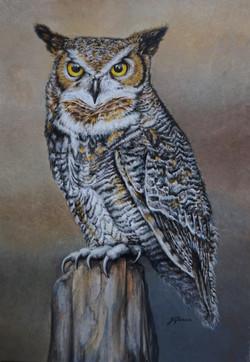 Horned owl 8x12 A4