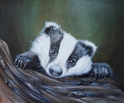 Peeping badger #2 12x10 inch