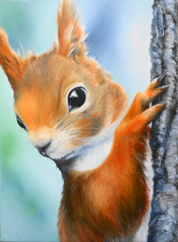 squirrell #1
