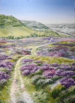 Heather path in Horcum