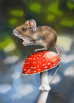 Mushroom Mouse 10x14x1.5inch