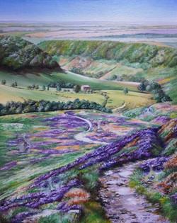 Pareidolia in Horcum in Purple