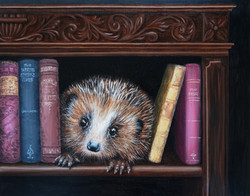Wild _ Hedgehog in the Bookcase