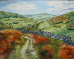 Bransdale_in_Autumn_20x16_£260