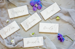 Oswego-Hills-Wedding-photo Corina Silva Studios-137-min