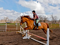 Jumping in the outdoor arena