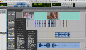 Screenshot of ProTools session with all foley recorded