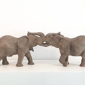 baiser d'éléphants