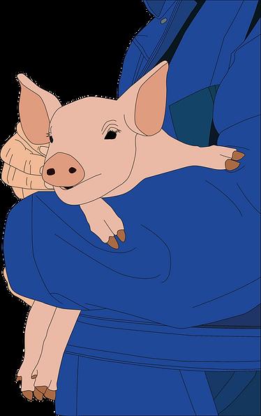 Pigtopia Logo