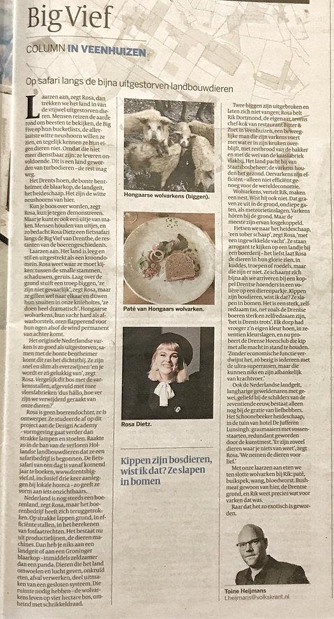 Big Vief Volkskrant column