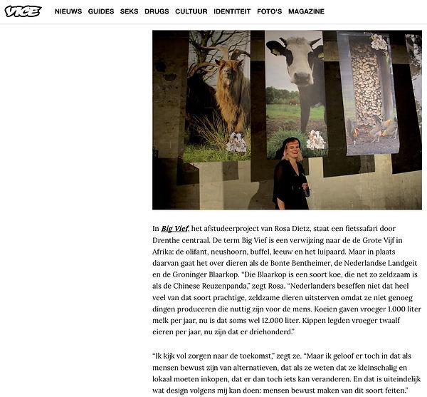 VICE Interview Big Vief