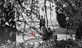 Charlie Chaplin en fauteuil roulant, sa femme Oona et leur fille Géraldine