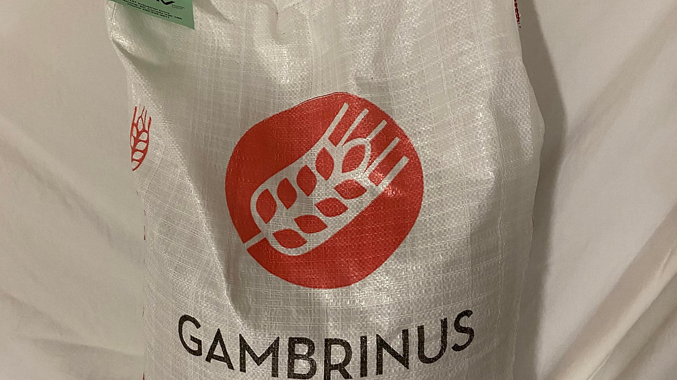 GAMBRINUS HONEY MALT By the pound