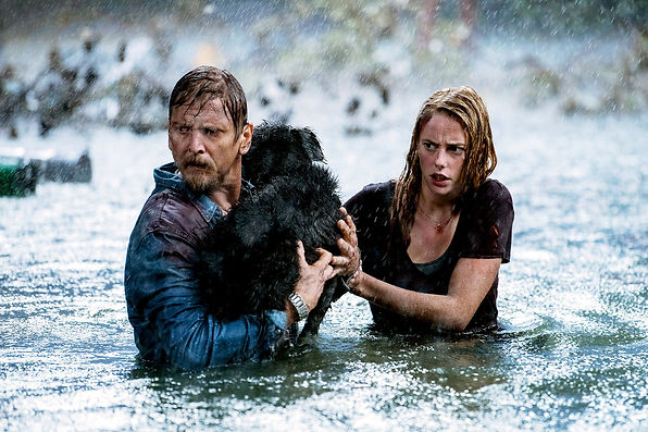 Crawl movie review, Crawls out in cinemas August 23rd