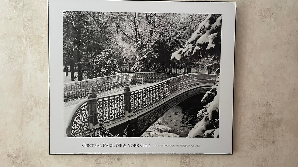 NYC Central Park Photo Mounted on Board