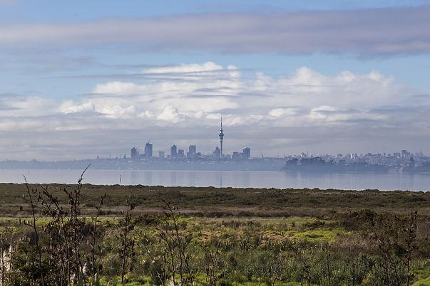 West Aucklandpests.jpeg