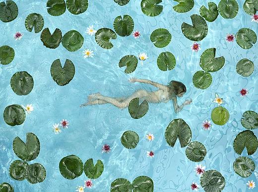 Patrick Van der Elst - water lily