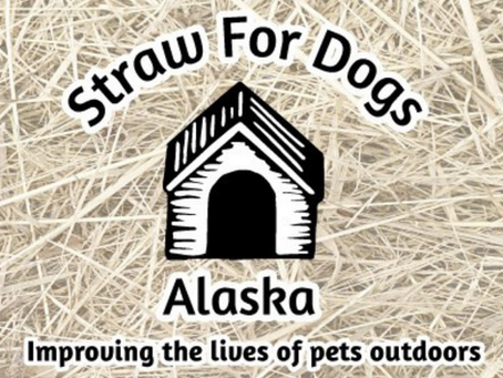 Introducing: Straw For Dogs a New Ally
