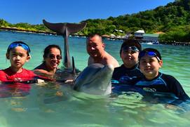 nadar-con-los-delfines.jpg