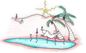 Processo de perda de calor de um meio através da evaporação da água. O sistema é direto quando a água evapora em contato com o ar que se deseja resfriar, umidificando-o. O sistema é passivo quando a evaporação ocorre naturalmente, sem consumo de energia, como no caso do uso de vegetação, de fontes d'água, torres de resfriamento e tanques na cobertura.