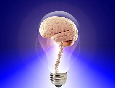 Hersenen en meditatie