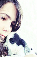 Fleeing domestic abuse with pets