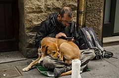 Assisting homeless with needs of their pets