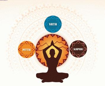 Equilibre et déséquilibre des Doshas Prakriti et Vikriti