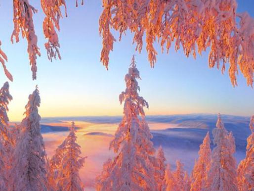 Traverser l'hiver sereinement avec l'Ayurvéda