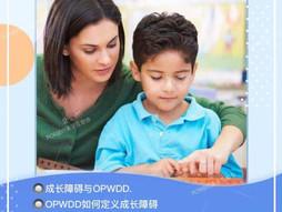 OPWDD Workshop