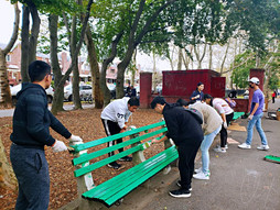 New Colored Benches
