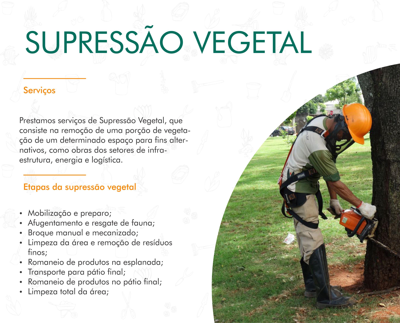 Portifólio - Supressão Vegetal