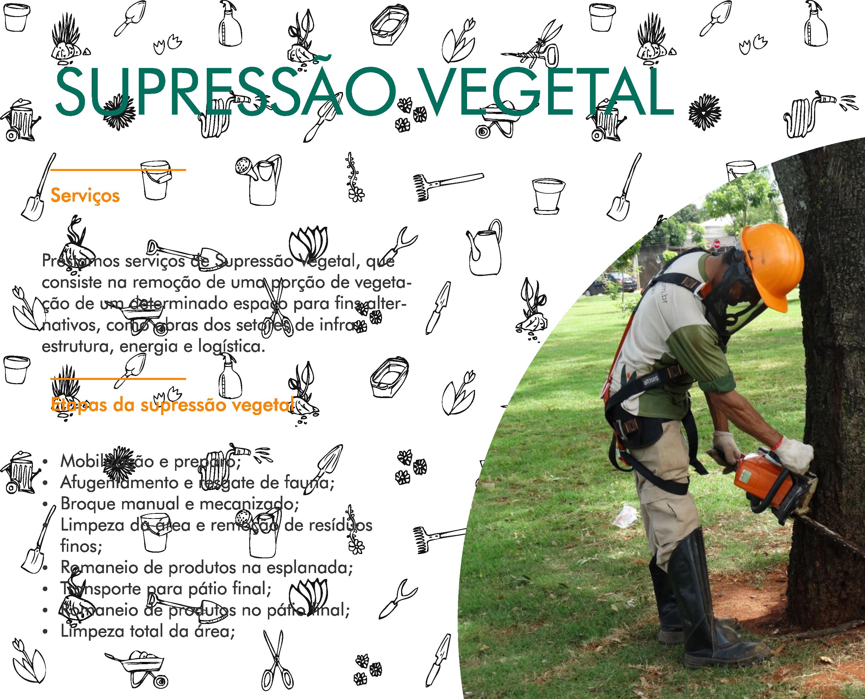 Projeto De Flora - 5Corel