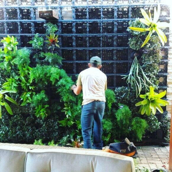 Deflora Paisagismo e Jardinagem