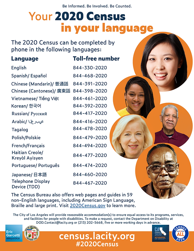 Census Languages.png