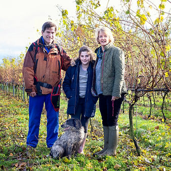 The Hemmant family own and run the vineyard at Chet and Waveney Valley