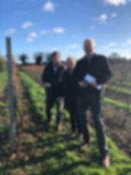 lease holders visiting vines at Chet and Waveney Valley Vineyard