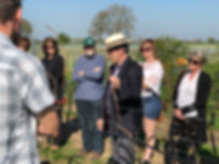 Winemakers Vineyard tour and wine tasting at Chet and Waveney Valley Vineyard