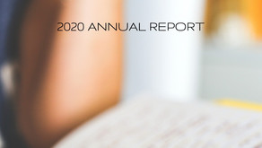 The Village Initiative Publishes its 2020 Annual Report