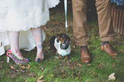 decourceys wedding