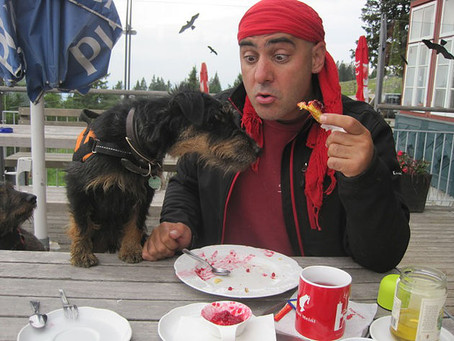 Good Canine Manners - has your dog got it?