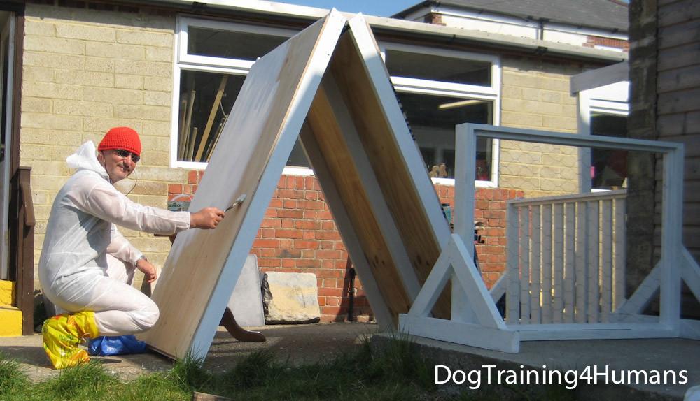 DogSchool (1 of 1)-380.jpg