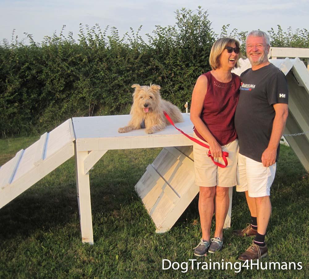 DogSchool (1 of 1)-867.jpg