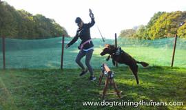 DogSchool (1 of 1)-27.jpg