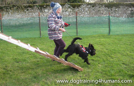 DogSchool (1 of 1)-86.jpg