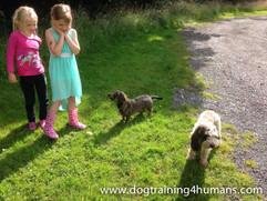 DogSchool (1 of 1)-42.jpg