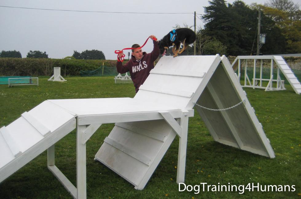 DogSchool (1 of 1)-442.jpg